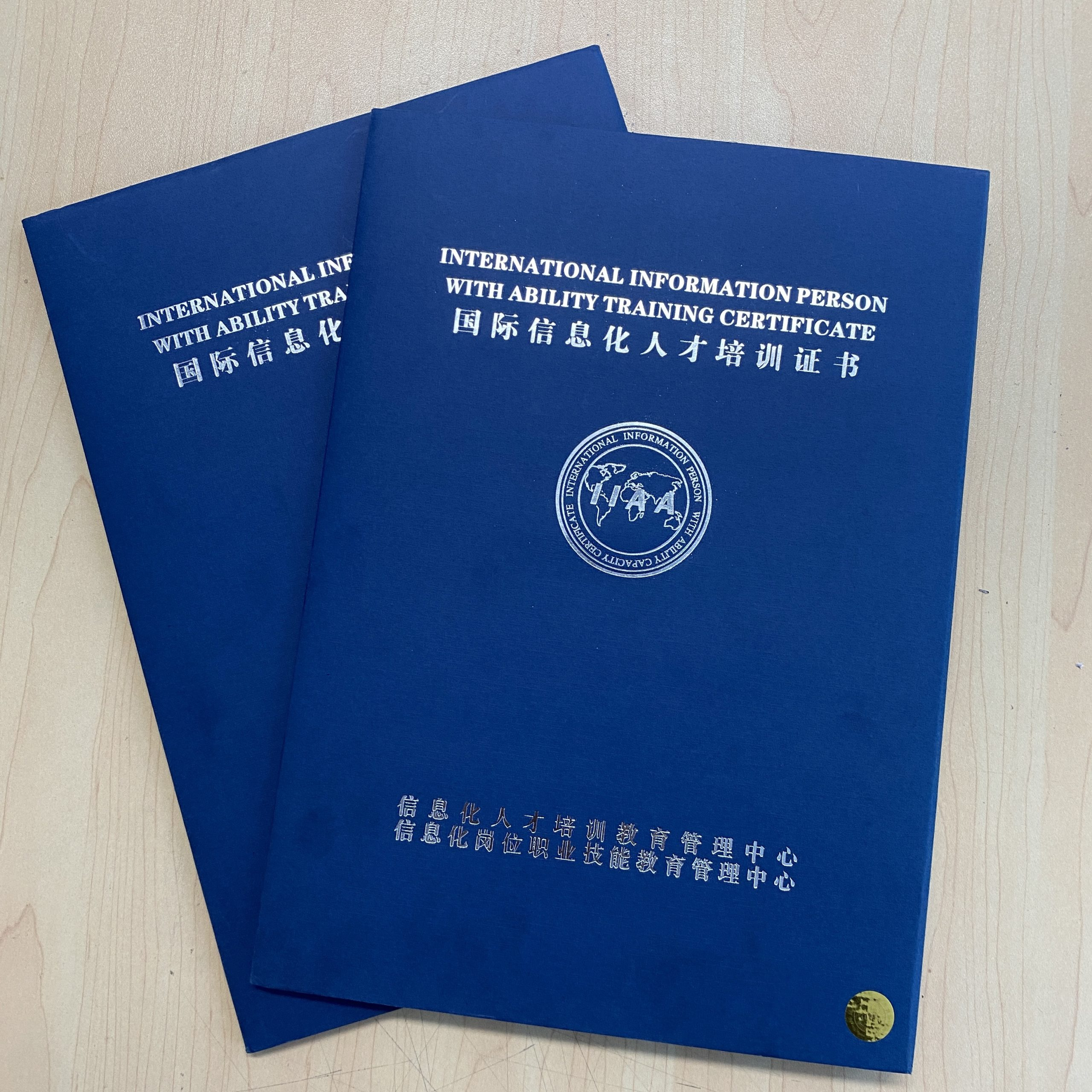 国际信息化人才培训证书
